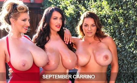 SeptemberCarrino:  50% Lifetime Discount!