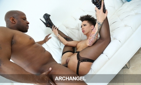 #8:  ArchAngelVideo Just 7.95 - Ends Today!