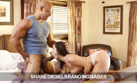 ShaneDieselbangingbabes:  9.95/Mo for Life!