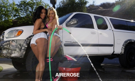 Airerose:  9.95/Mo for Life!